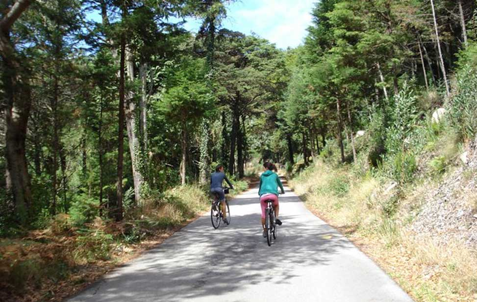 Self-Guided Sintra E Bike Tour